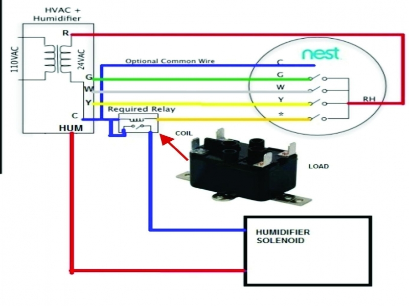 Wiring Diagram For A Line Voltage Thermostat : Wiring diagrams nest line voltage thermostat and